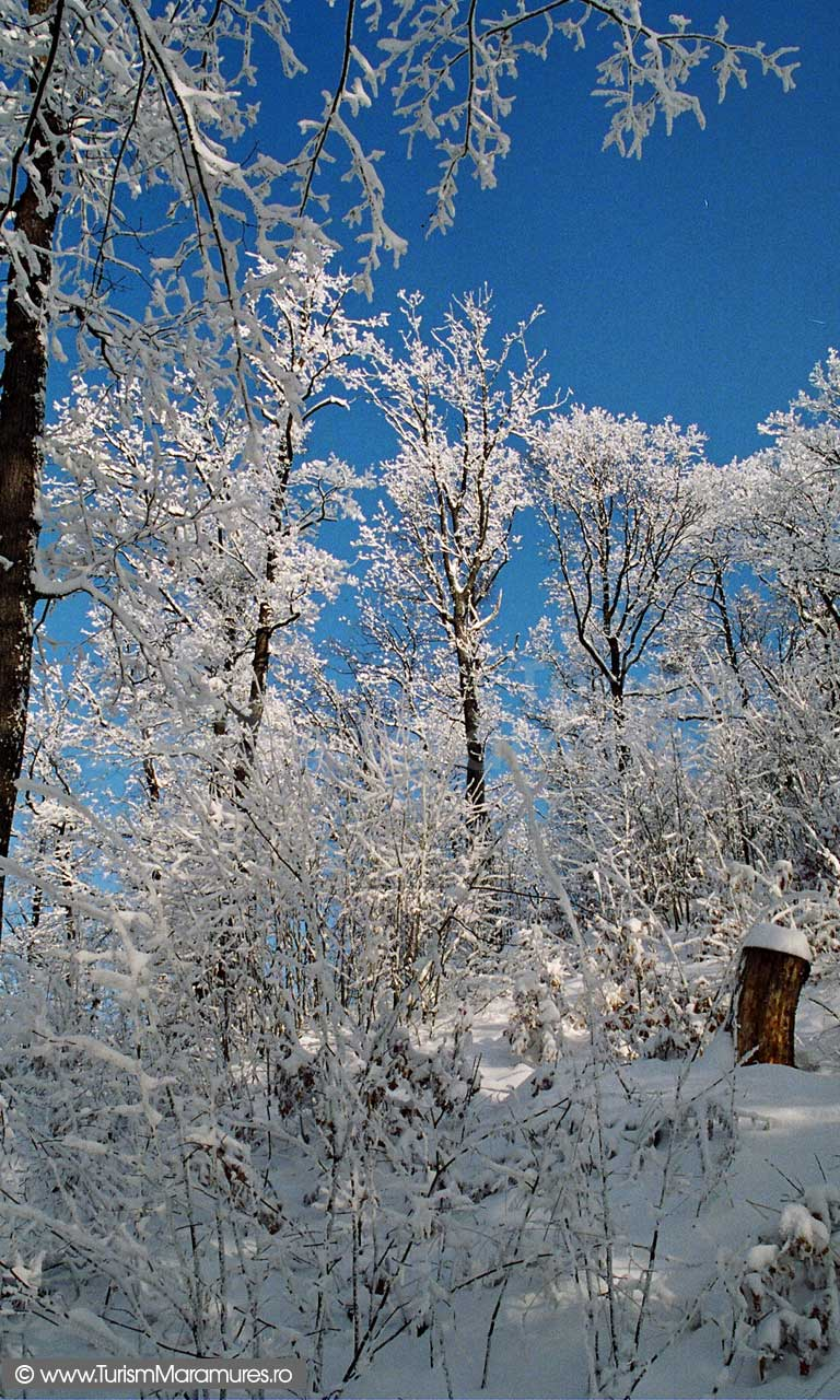 Maramures-iarna