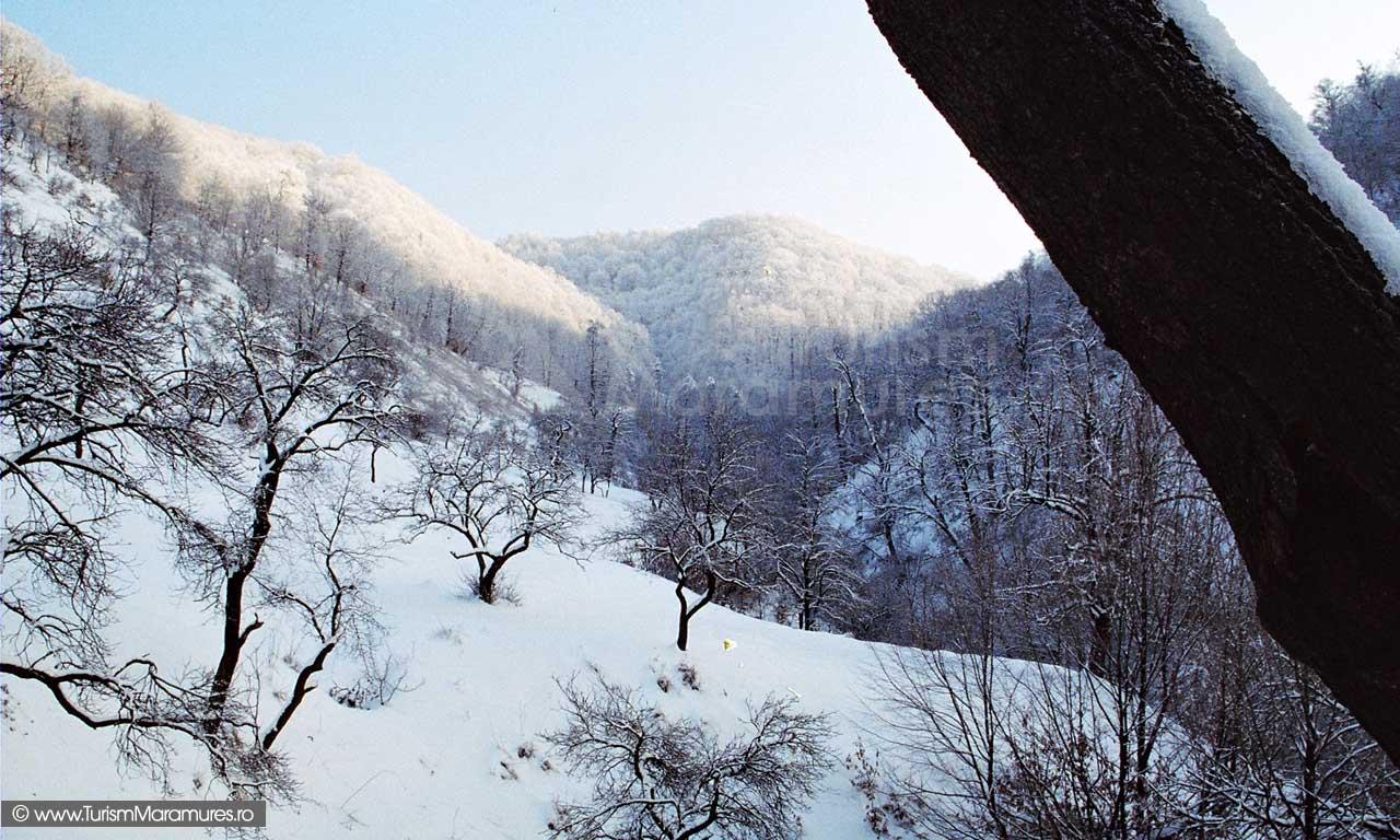 Valea-Cerbului-Maramures_01