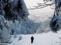 Baia Mare: Dealul Bulat – vârful Chiuzu – Groapele Chiuzbăii