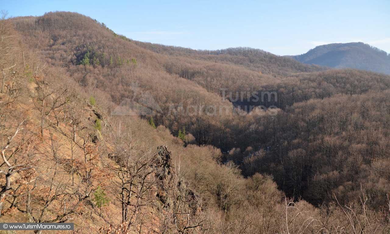 Dealul Manastirea si varful Iricau