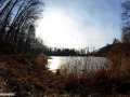 Baia Mare (Ferneziu): Lacul Bodi Ferneziu