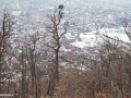 Baia Mare: Pe Dealul Crucii și valea Vicleanu Mare