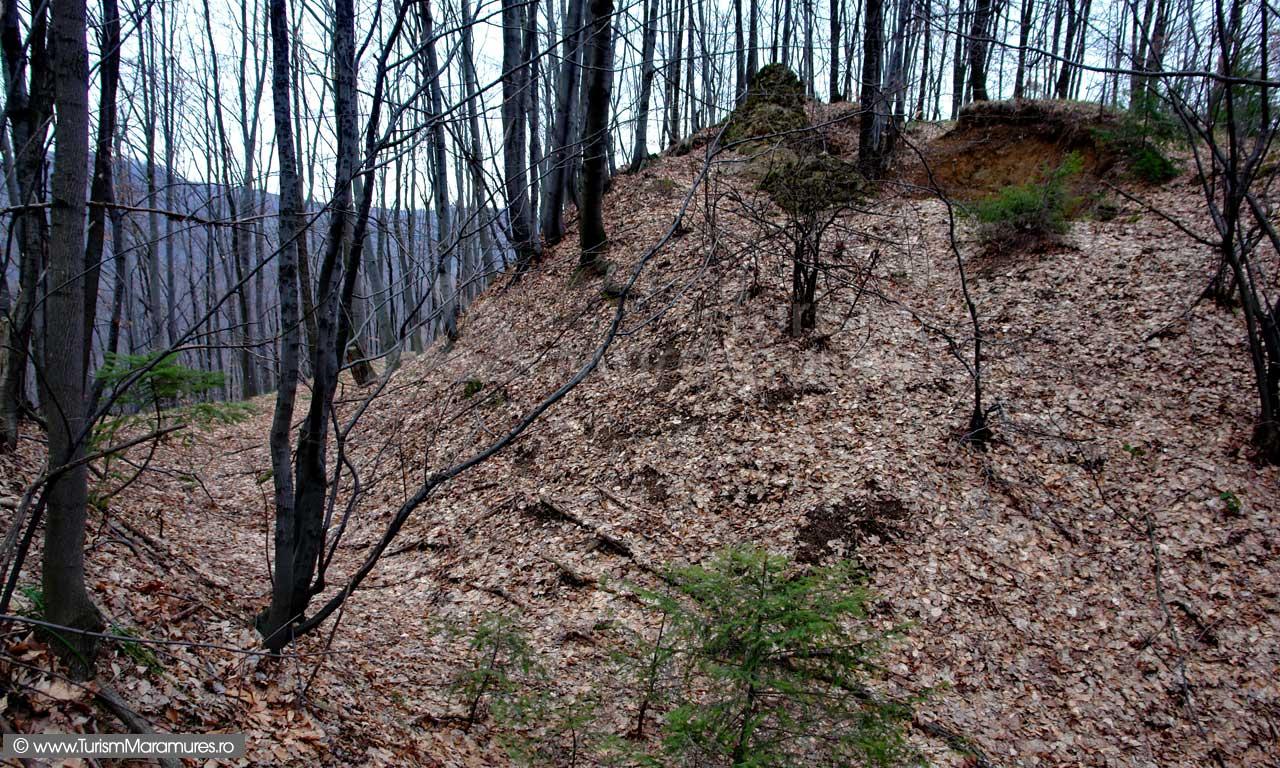 Sant-aparare-N-NE-Cetatea-Liszabona-Gelert