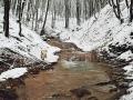 Valea-Bartosa_talveg-andezitic