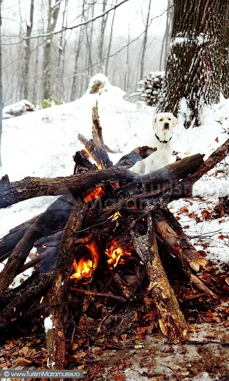 Popas-cu-foc-de-tabara-iarna