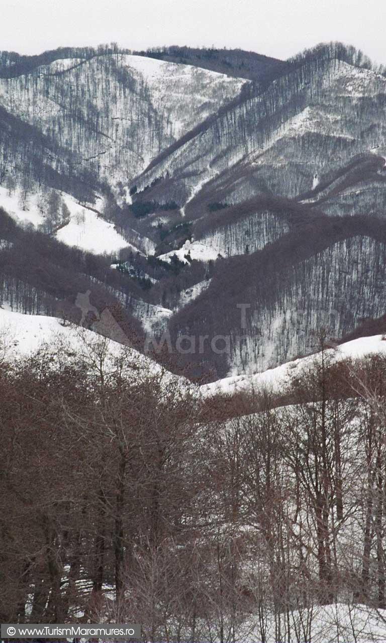 Valea-Chiuzbaia_obarsie