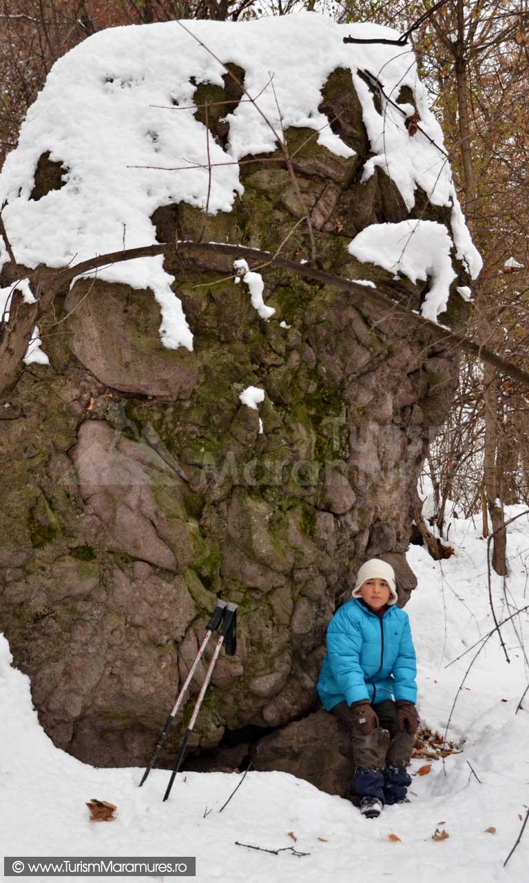 Aglomerat-vulcanic-de-tip-brecii-sub-Piatra-Corbului-Maramures