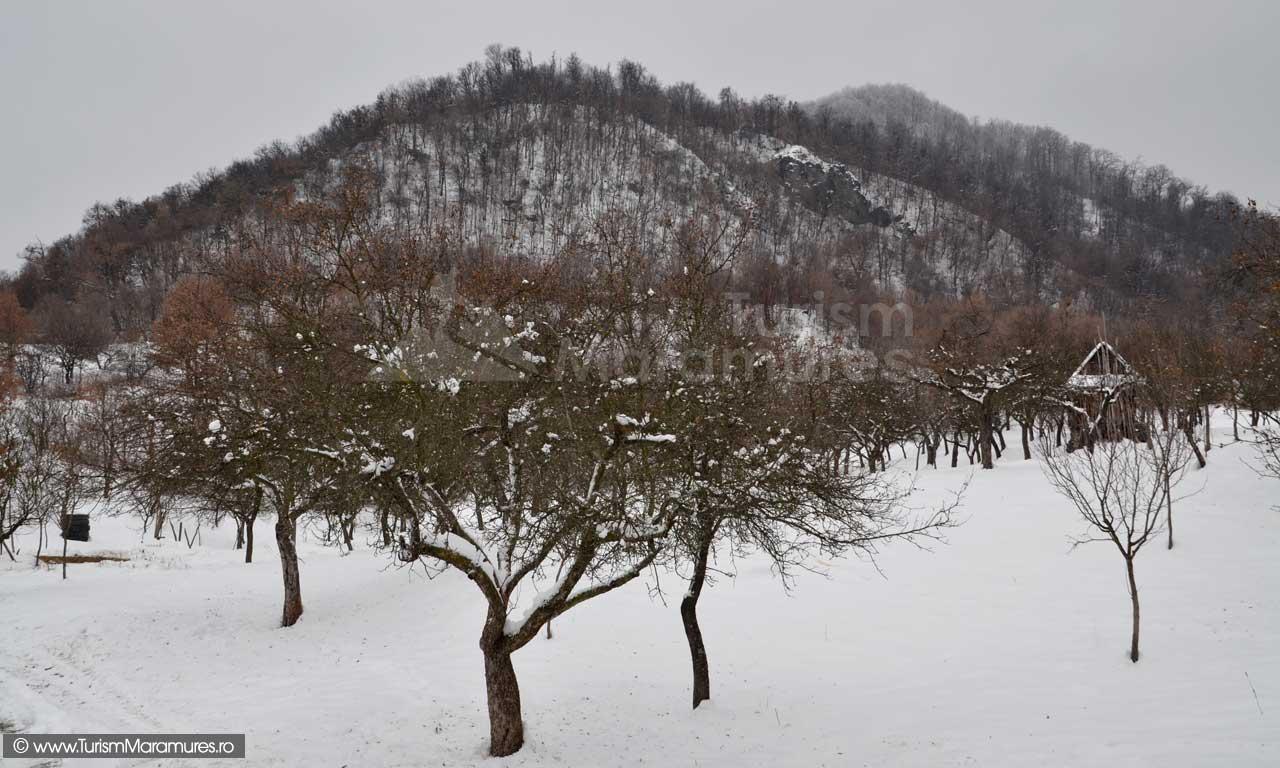 Dealul-Bodoaia_Piatra-Corbulu_Dealul-Bulat
