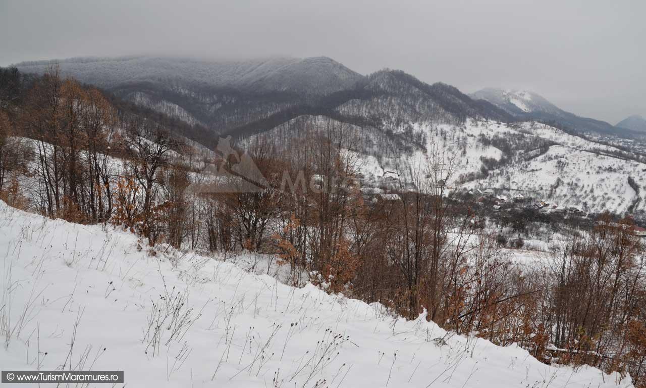 Dealul-Rosu_Dealul-Minei_Baia-Sprie