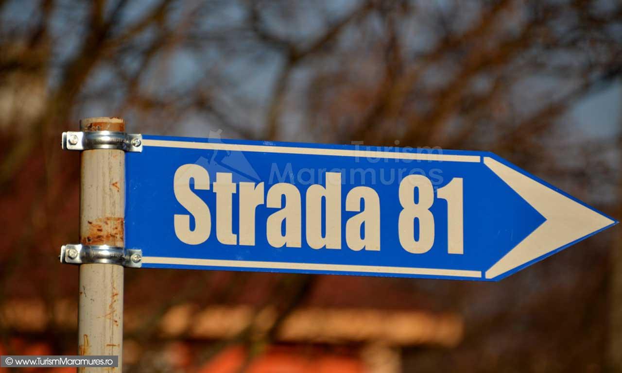 Strada-81-Baita-Maramures