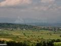 52-Lapus-Remetea-Chioarului-Coas-Baia-Mare.jpg