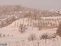 02-Iarna-in-Grosi