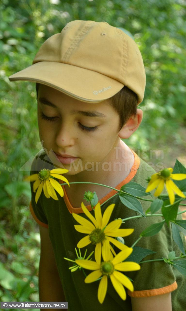 55_Radu-adulmecand-flori