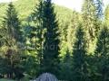 06-Bocserie-de-mangal-Valea-Strambului
