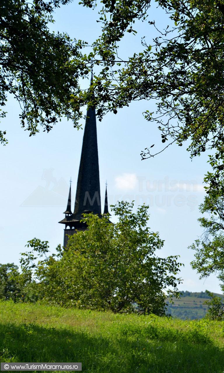 30_Biserica-UNESCO-Plopis