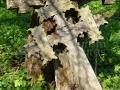 09-Cruci-de-lemn-vechi-Breb