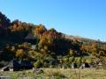 0182_Pe-Valea-Mare