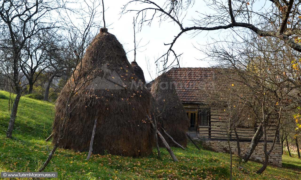 Casa-Buteasa-Maramures