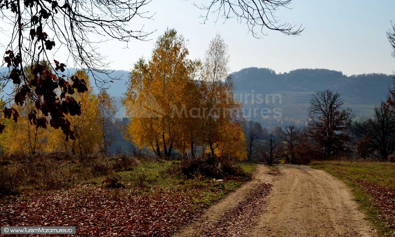 Dealul-Curmaturii_Maramures