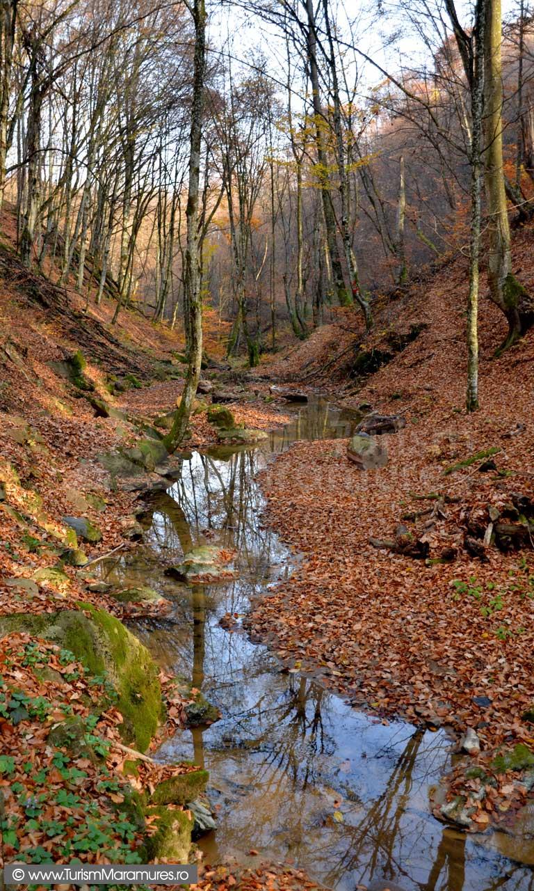 Valea-Dosului_Maramures