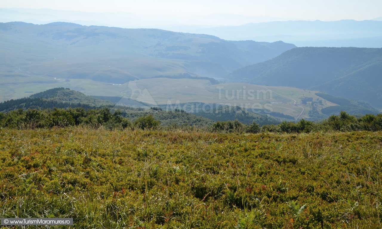 Vedere-de-pe-Plesca-spre-Runcu-Tataru_0043