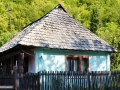 31-Casa-lapusana-Baiut-Lapus