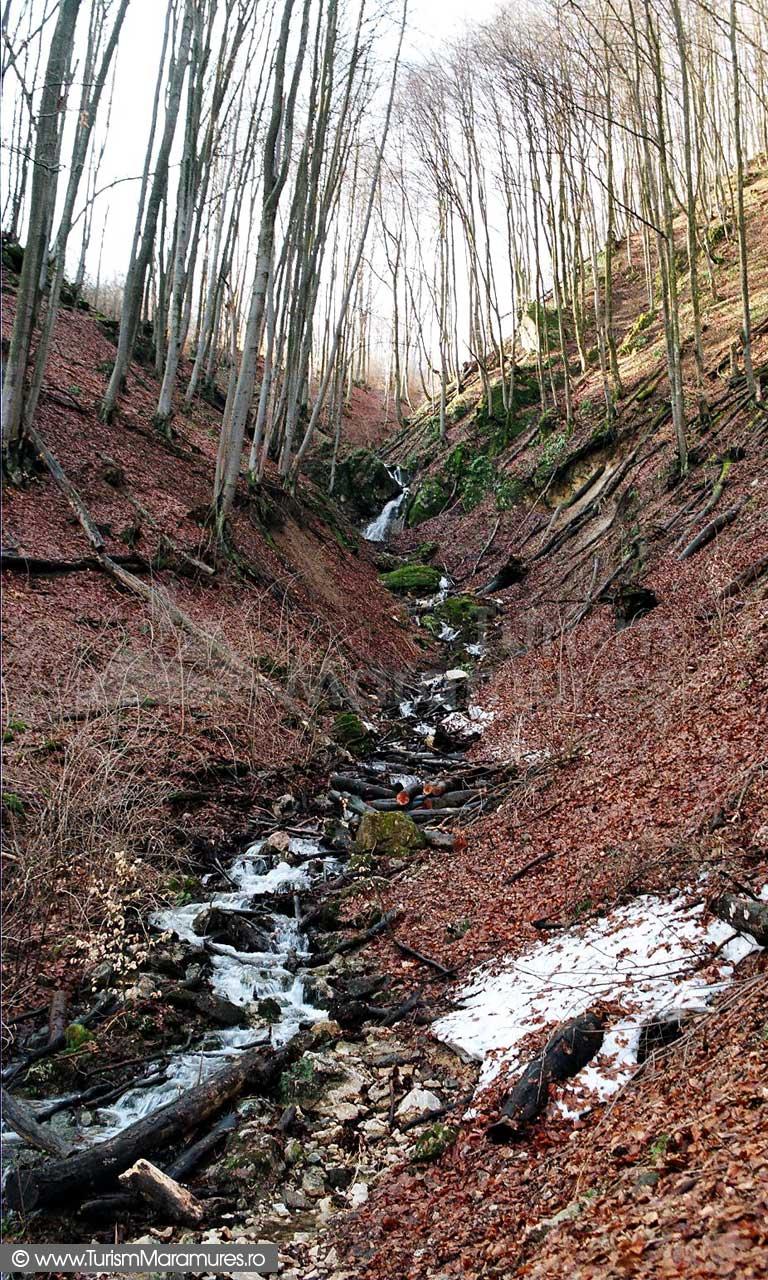 Valea-Babei-Maramures