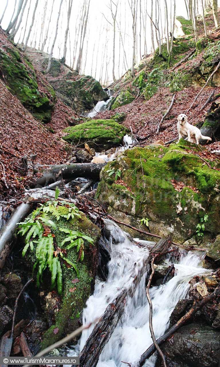 Valea-Babei_Cascada-Babei-Maramures