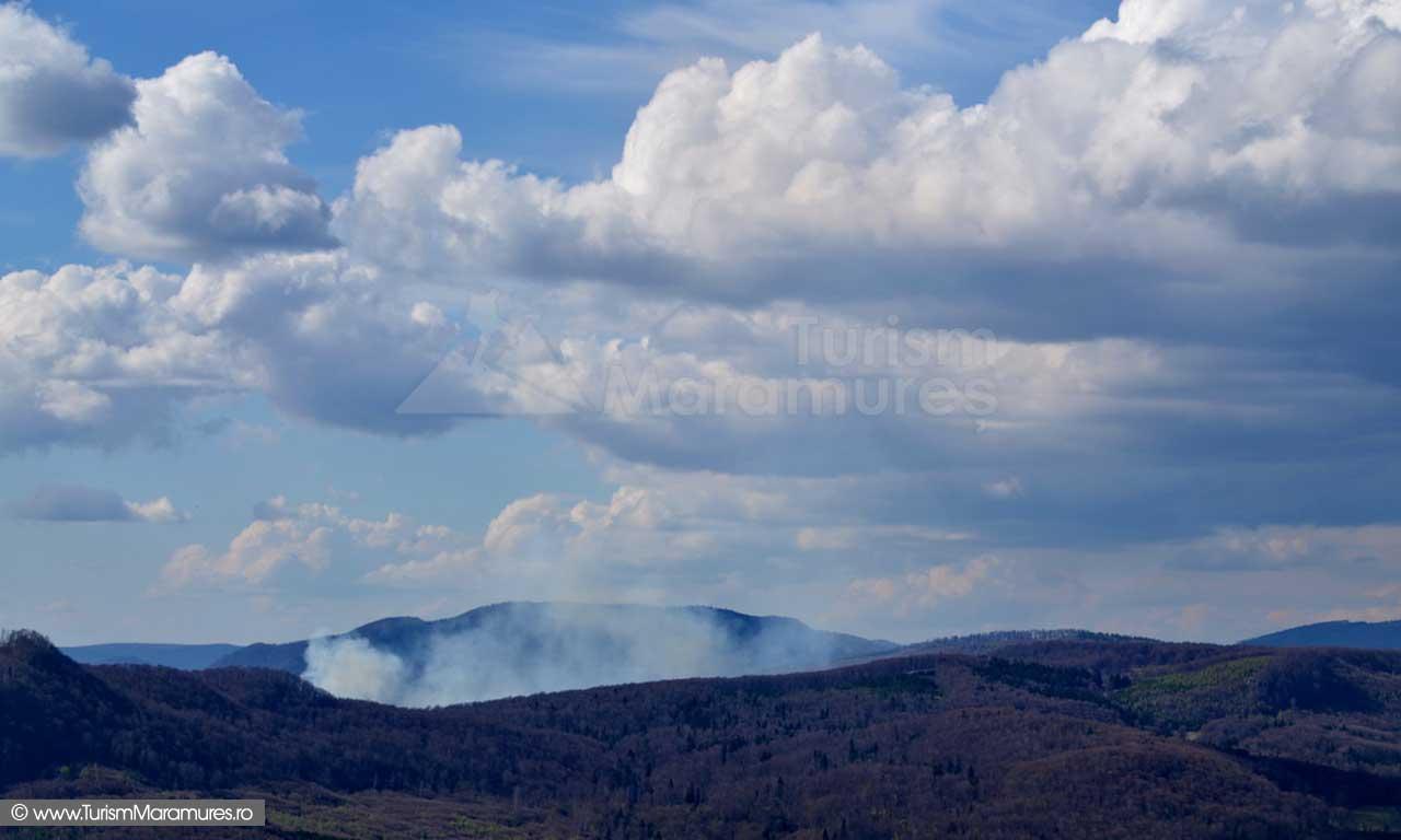 93_Incendiu-zona-baraj-Runcu-Tataru