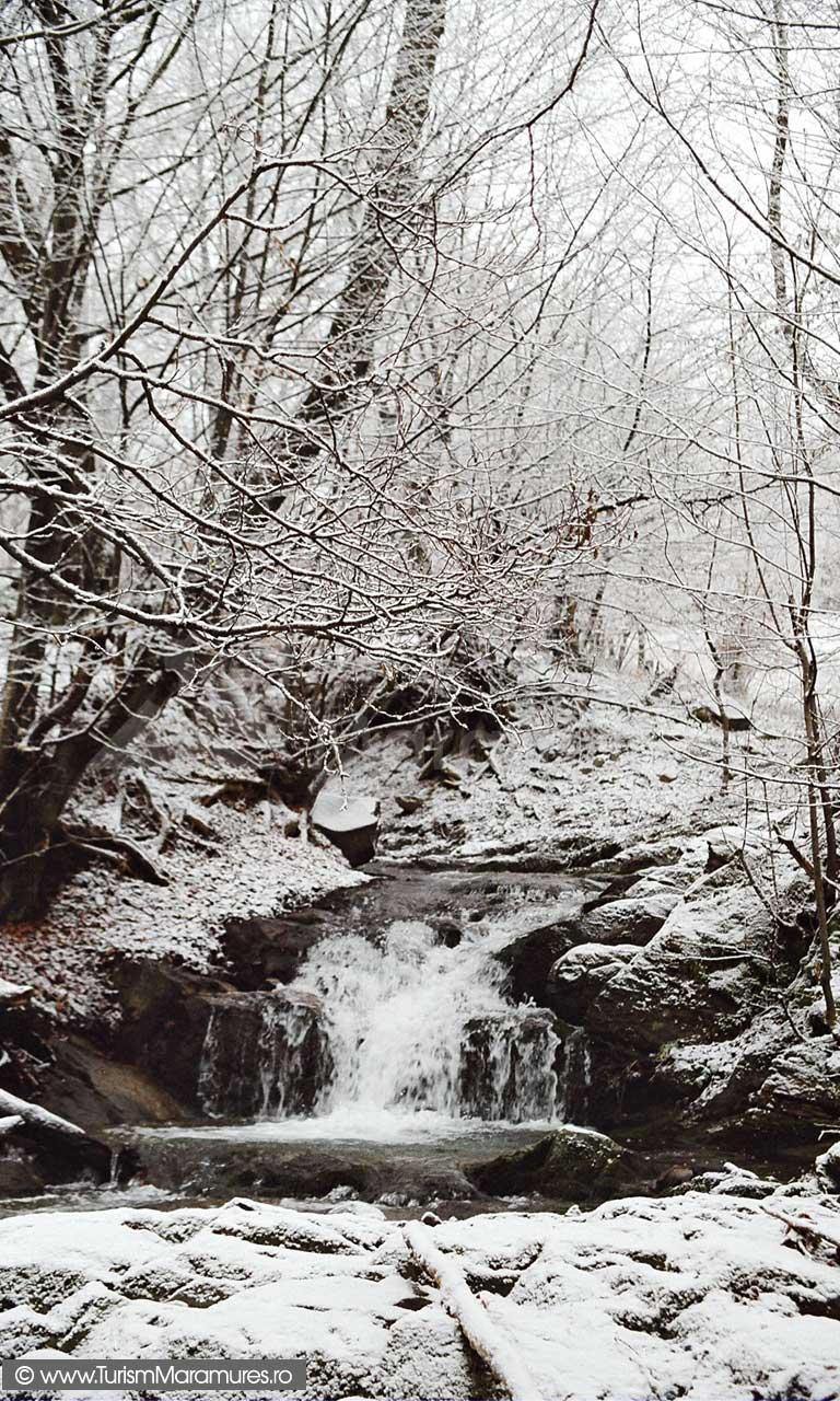 Valea-Izvorul-Bulzului