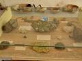 20_Muzeul-Born-Papp-Cavnic
