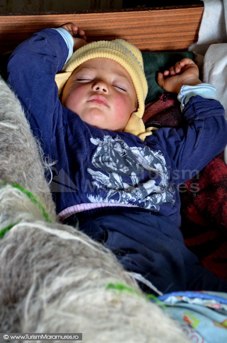 0220_Tomas-Fechete-nepotul-Zoricai