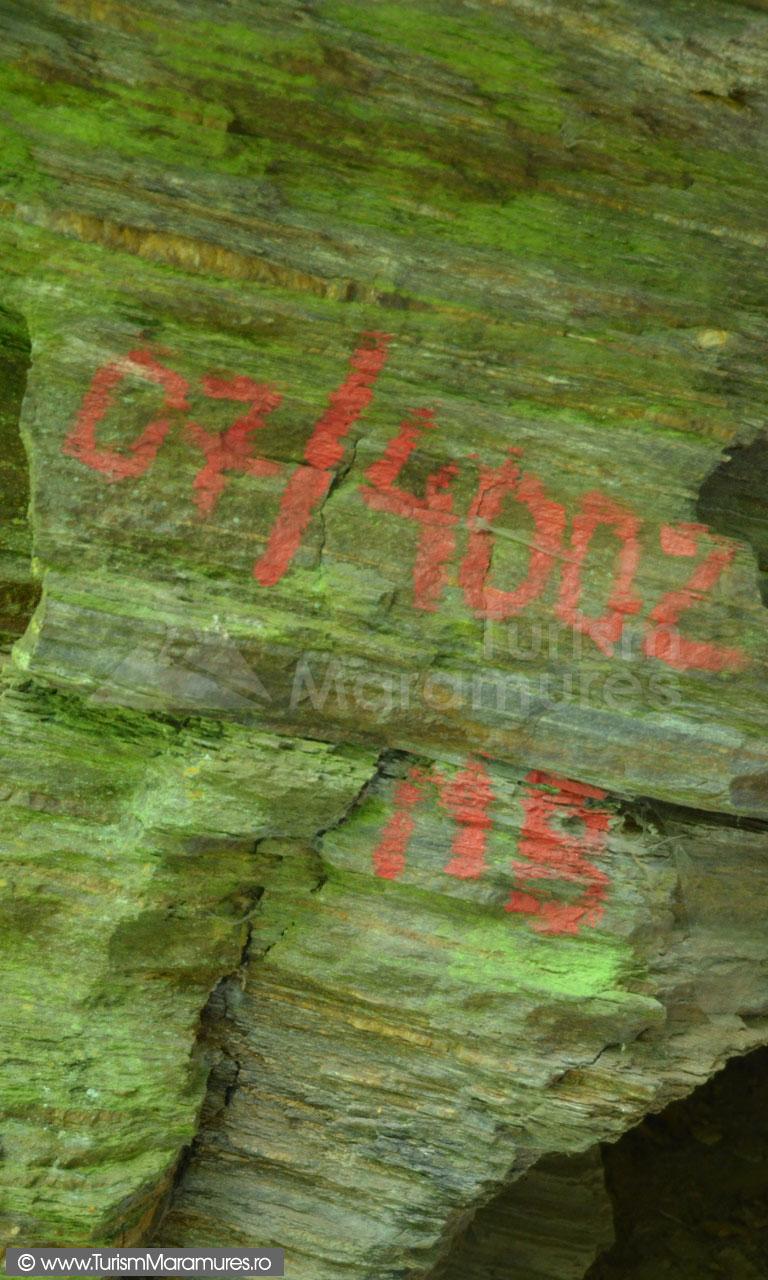 0261_Indicativ-speologic-pestera-Curtea-Capitanului