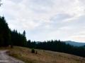 03-Debut-traseu-spre-vf-Breze