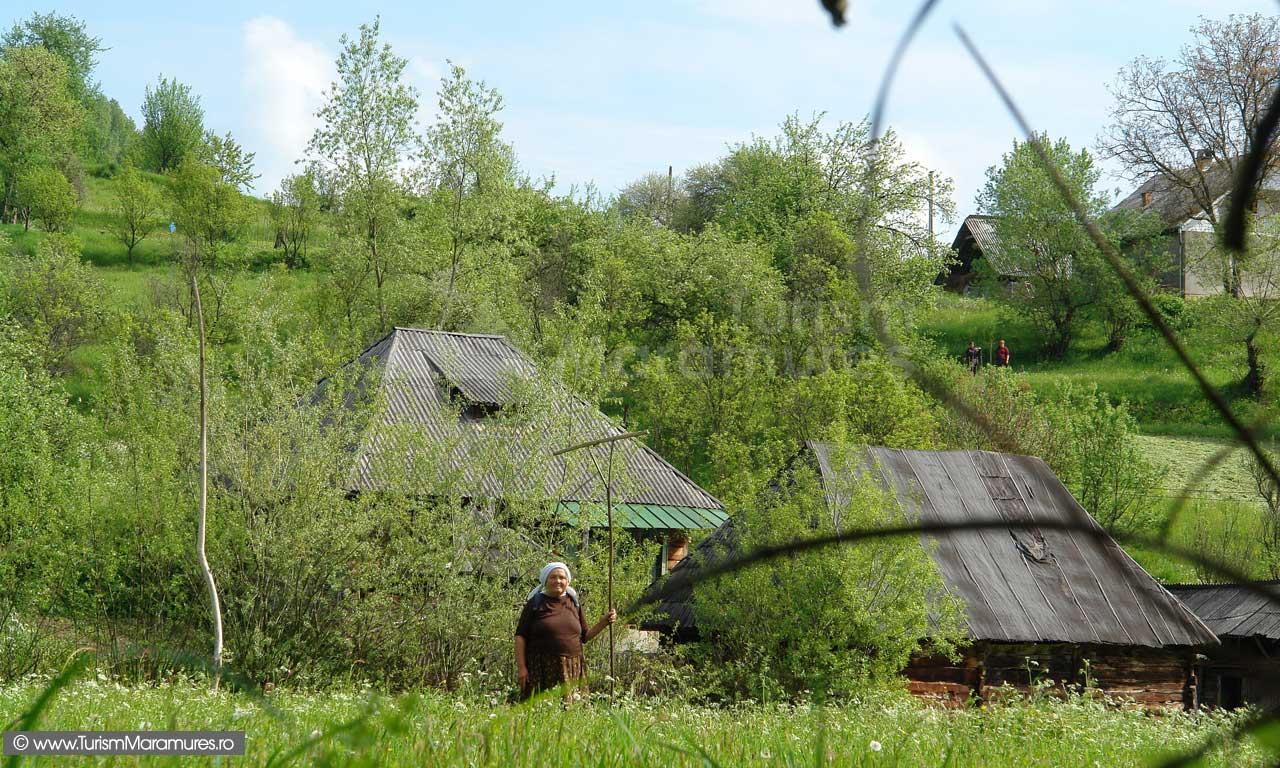 35_Din-Slatioara