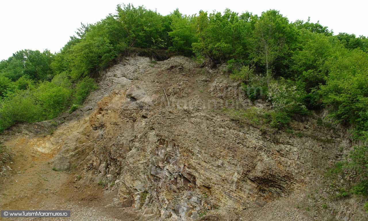 45_Fosta-cariera-de-tufuri-vulcanice-de-Dej-din-Valea-Stejarului
