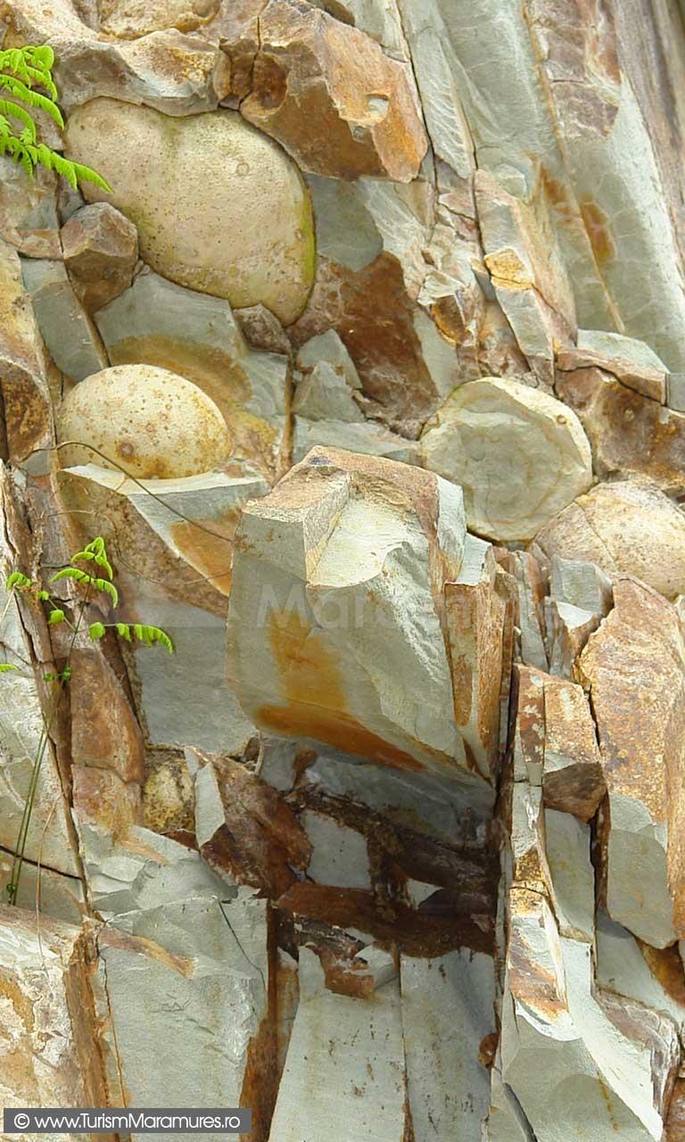 50_Oolite-in-tufuri-vulcanice-de-Dej