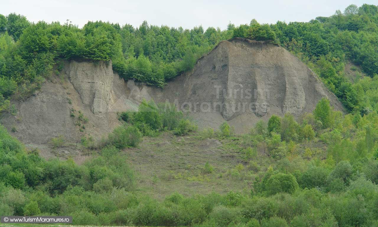 62_Afloriment-marnos-pe-Valea-Cosaului