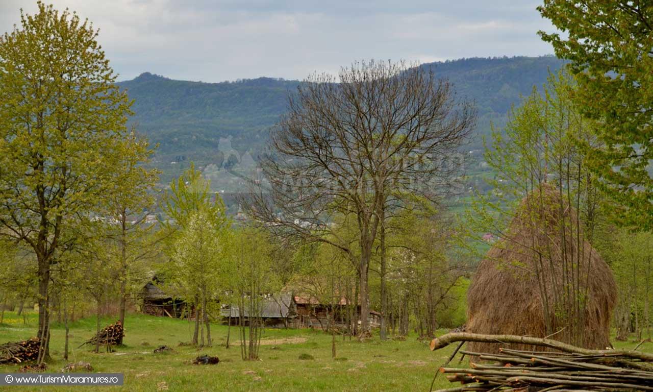 70_Taurile-Hoteni-Maramures