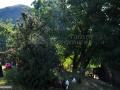 16-Valea-lui-Botis-Maramures.jpg