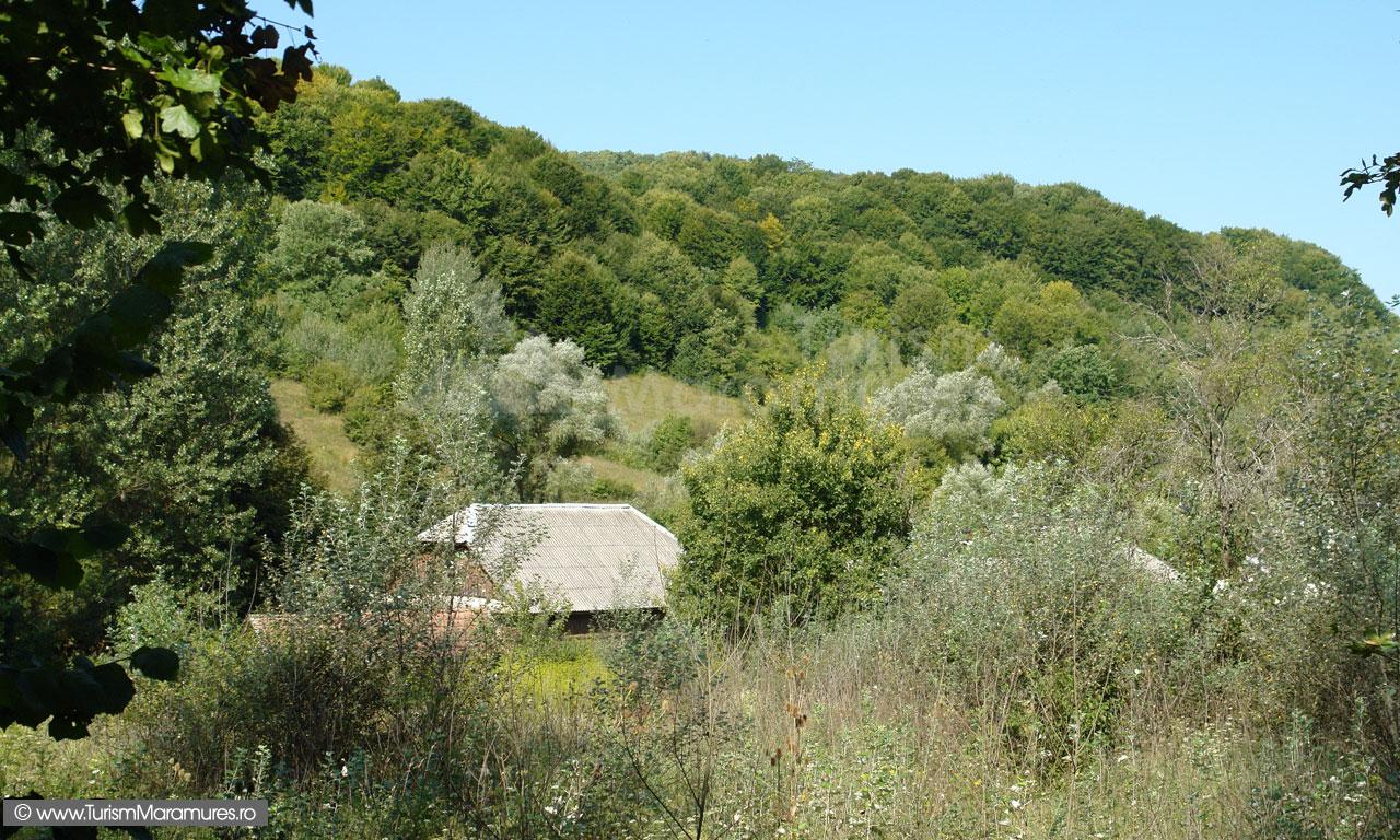 27_Valea-Gadelui