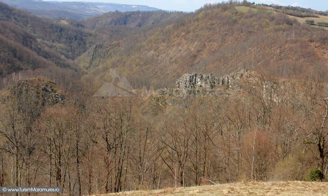 Cetatea din Dealul Corbului Maramures_01