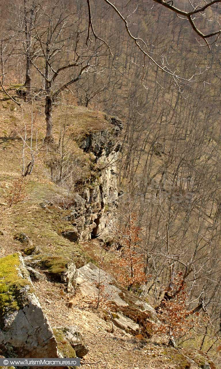 Cetatea din Dealul Corbului Maramures_02