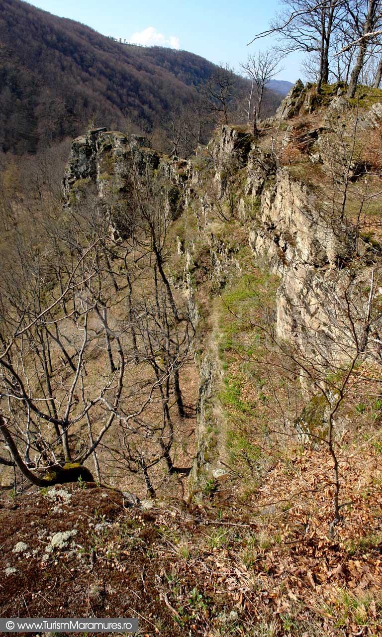 Cetatea din Dealul Corbului Maramures_03