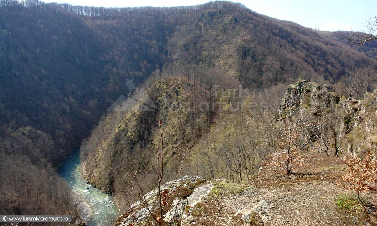Cetatea din Dealul Corbului Maramures_04