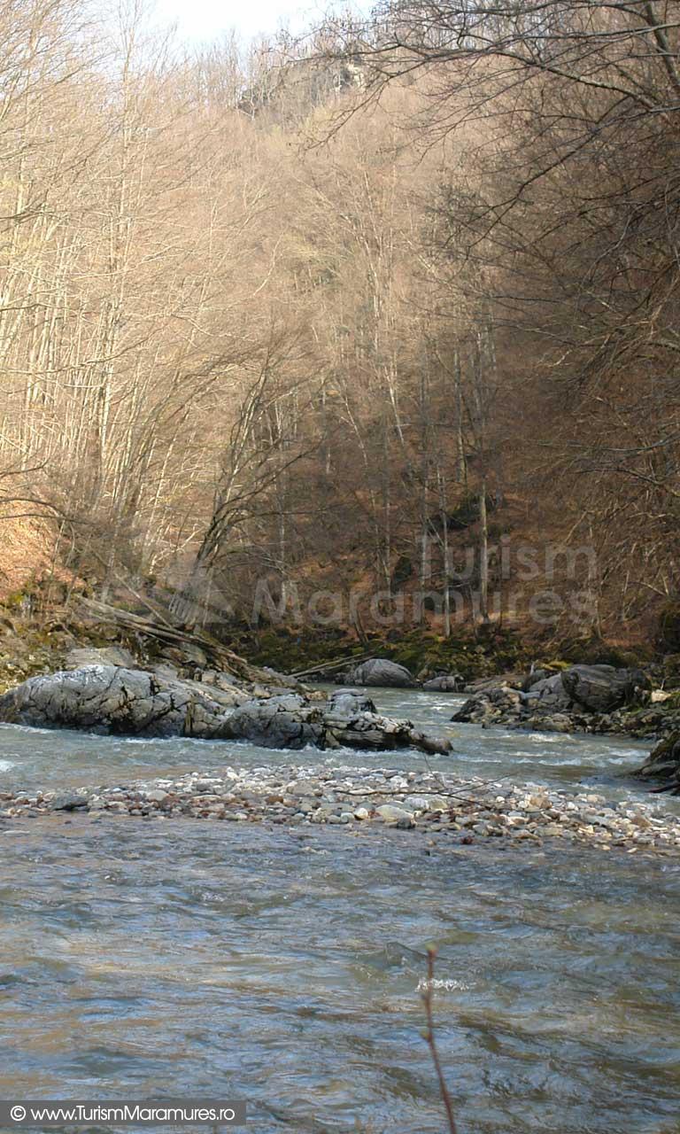 Lapusul aval de pod Salnita zona Cazane