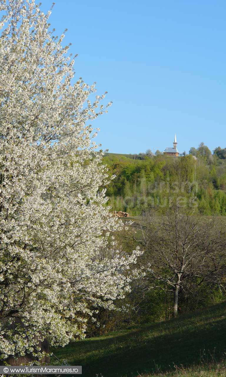 Biserica din Dealul Pitigai
