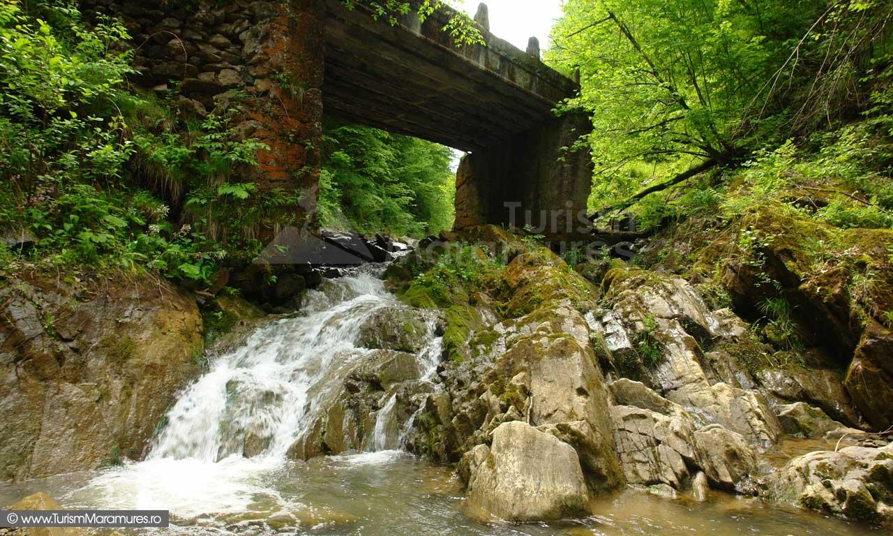 15_Podul-de-la-capatul-vaii-Prislopului