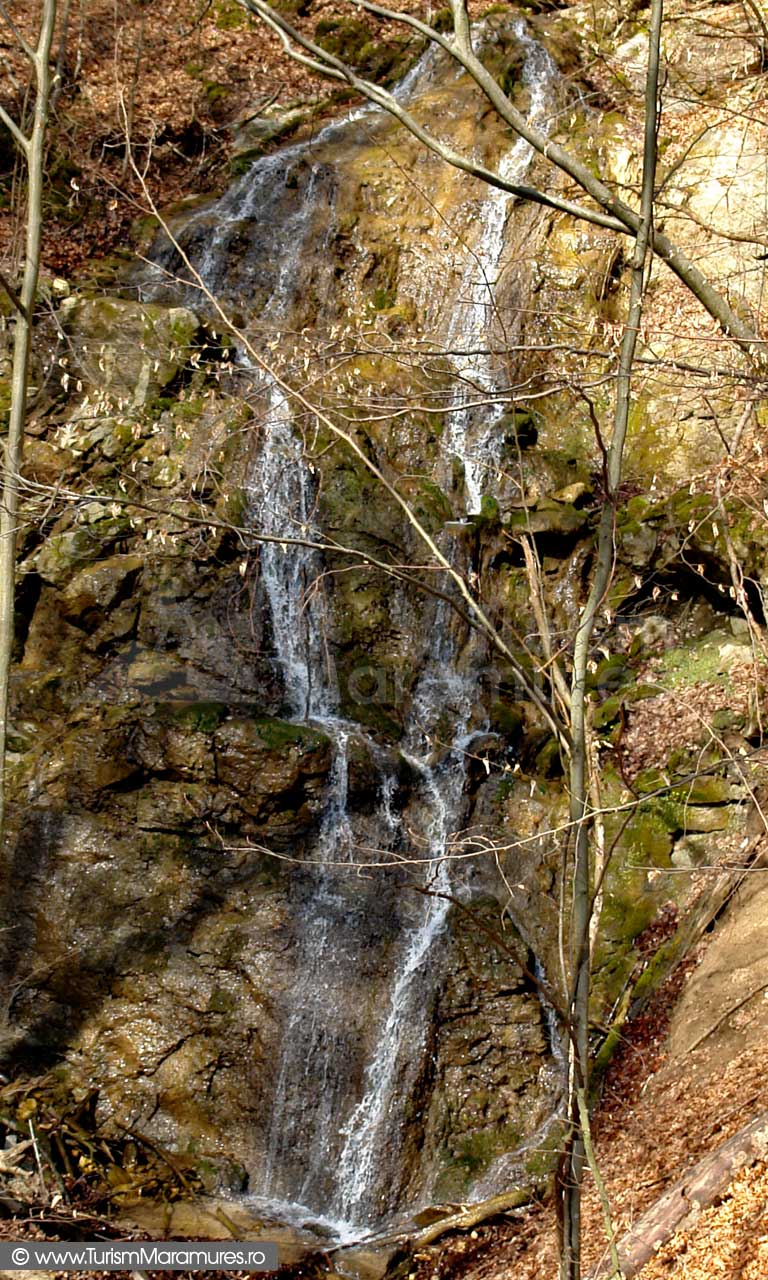 Cascada-valea-Branistei