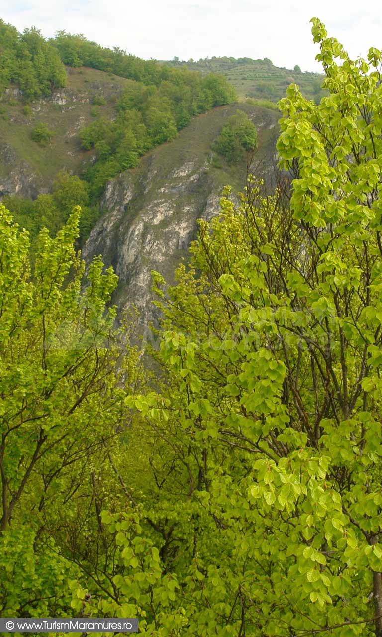 17_Piatra-Cerbului